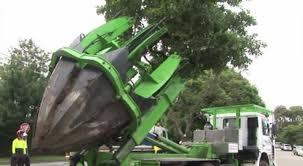 «Чудо-машины» в помощь при пересадке деревьев