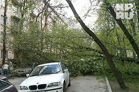 Буря в Тамбовском районе