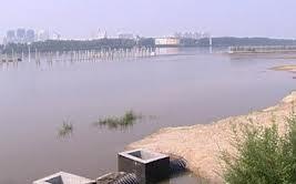 Река Амур затопила набережную областного центра