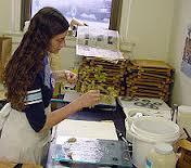 Электронный гербарий появился в Благовещенске