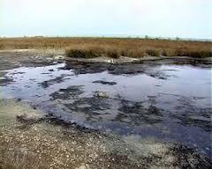 Ивановский суд обязал администрацию Ивановского района ликвидировать мазутное озеро