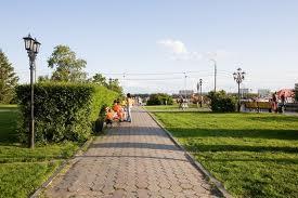 Вследствие льгот, арендаторы смогут выкупать земельные участки Приамурья