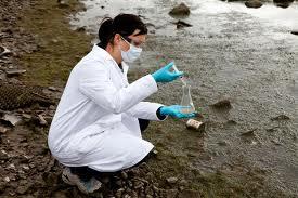 Амурские золотодобытчики загрязняют реку Пикан