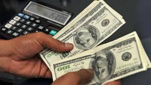 В Госдуме рассматривается закон, который запрещает пользоваться долларами в России