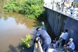 Аграрий из Приамурья получил компенсацию за недобор урожая из-за наводнения