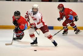 Самым перспективным спортом для Приамурья считается хоккей