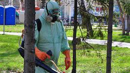 В Приамурье принято решение усилить меры по борьбе с клещами