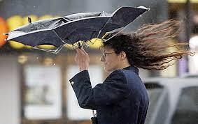 В Амурской области усиливается ветер