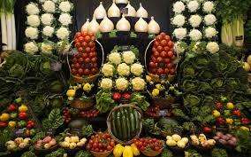 Выставка овощей, выращенных студентами БГПУ