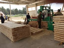 Деревообрабатывающие компании принимают участие в подготовке кадров для отрасли