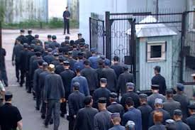 К юбилею Победы ожидается амнистия около 60 тысяч заключённых