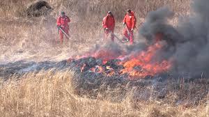 Ситуация в Амурской области с ликвидацией пожаров