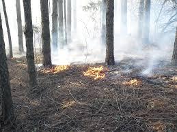 Пожароопасность в Зейском и Магдагачинском районах
