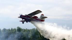 Бюджет Амурской области предусматривает средства на авиалесоохрану