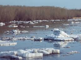 Вскоре начнется ледоход на амурских реках