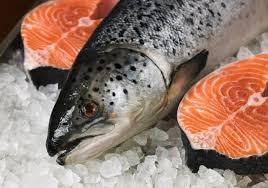 Прудовое рыболовство в Амурской области