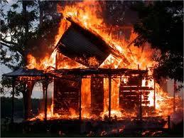 Домашние питомцы сгорели из-за халатности хозяина