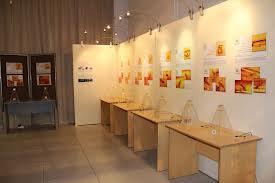 Выставка древних насекомых в янтаре