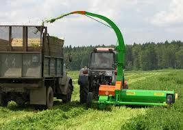 Ужесточение контроля по заготовке кормов