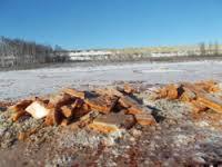 Красный лёд, найденный на руднике «Пионер», не содержит цианидов