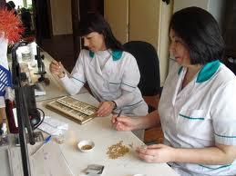 Сертификации семян и посадочного материала выполнена предприятием ФГБУ «Россельхозцентр»