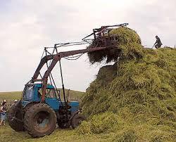 Заготовка кормов в Приамурье должна вестись вне зависимости от погоды