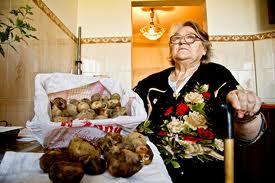 Пострадавшие недовольны качеством картофеля