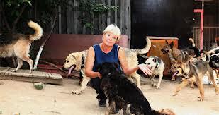 Илона Броневицкая отметила доброту Александра Айзверта, который спас собак во время наводнения