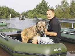 Житель Благовещенска спас собак во время наводнения