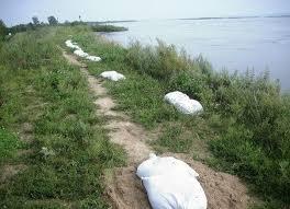 На укрепление берегов Зеи и Амура планируется выделить 41 миллион рублей