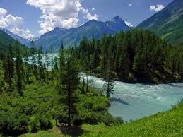 Лечебно-оздоровительный туризм в Алтайском крае