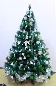Благовещенские покупатели могут приобрести елки из Копенгагена