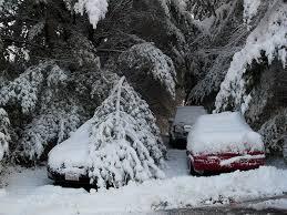 Опрос на улицах Благовещенска показал, что горожане отлично переносят холод
