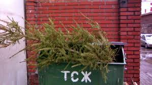 Очистка микрорайонов после новогодних праздников