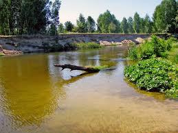 Предприятие РЖД загрязняет реку нечистотами