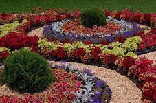 Весной в Благовещенске появятся цветочные шары