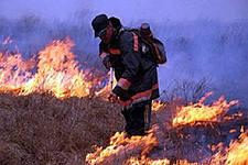 Муравьёвский парк пострадал от пожара