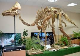 Экскурсия для слепых в палеонтологическом музее