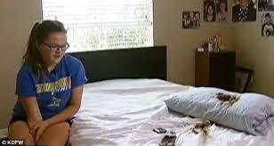 В кровати 13-летней девочки расплавился смартфон Samsung Galaxy S4