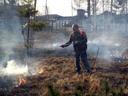 Приамурье почти готово к борьбе с пожарами
