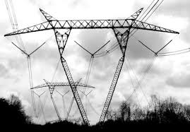 Охранные зоны ЛЭП контролируются энергетиками ДРСК