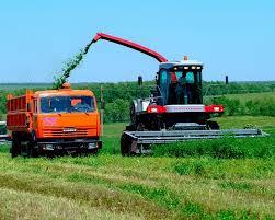 Аграрии Приамурья недополучили кредиты на посевную
