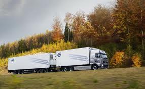 Несколько транспортных компаний получили лицензии на работу