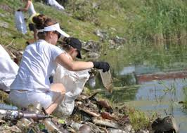 Берег реки Зеи планируется очистить