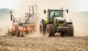 Развитие частных крестьянско-фермерских хозяйств в Амурской области