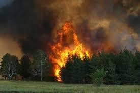 Жители посёлка Тутаул опасаются приближения огня к жилой зоне