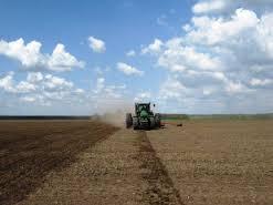 В Белогорске проходит ревизия земельных участков
