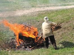 В Благовещенске строго запретили жечь траву и листья