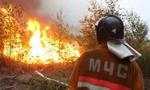 Вчера в Амурской области снят режим пожарной опасности